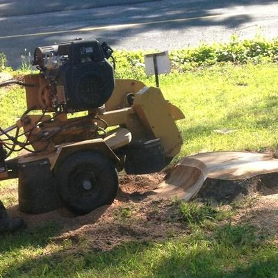 Avatar for Mountain View Landscaping & Sons LLC Torrington, CT Thumbtack