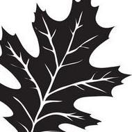 Oak Leaf Landscape