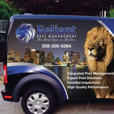 Avatar for Reliant Pest Management Quincy, MA Thumbtack