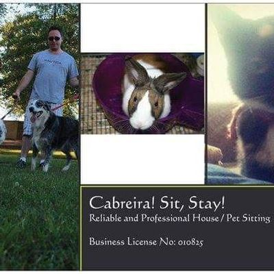 Cabreira's Sit, Stay Services Rocklin, CA Thumbtack