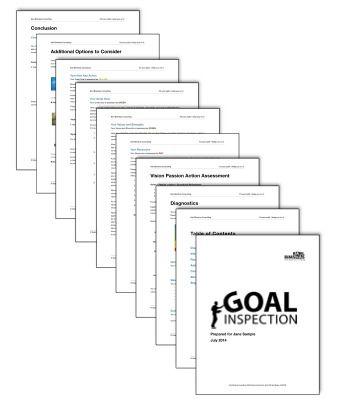 Goal Inspection Report