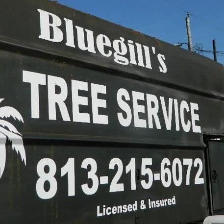 Bluegill's Tree Service, LLC
