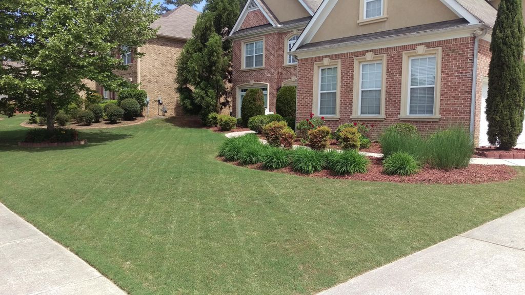 Mo's Mows Lawn Care and Pressure Washing
