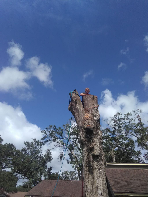 Larry Sacco's Tree Service inc.