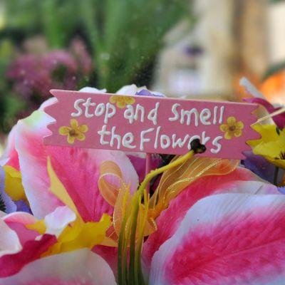Avatar for Plain City Florist