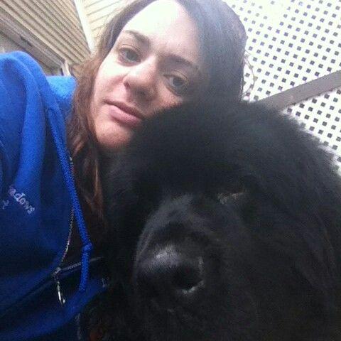 Jezzie Paws Dog Training - Millbury MA