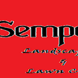 Avatar for Semper Fi Landscaping & Lawn Care