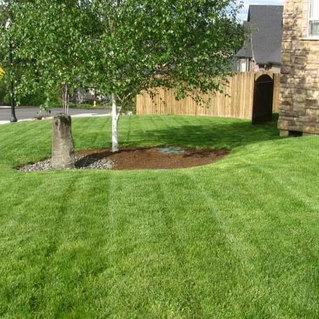 Citywide Lawn Services