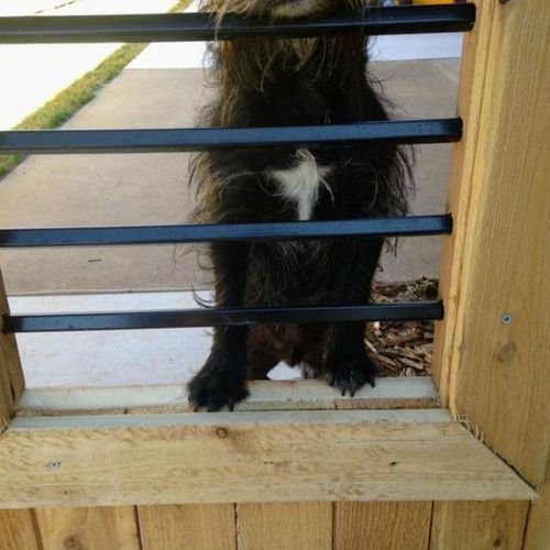 Custom Built Doggie Window