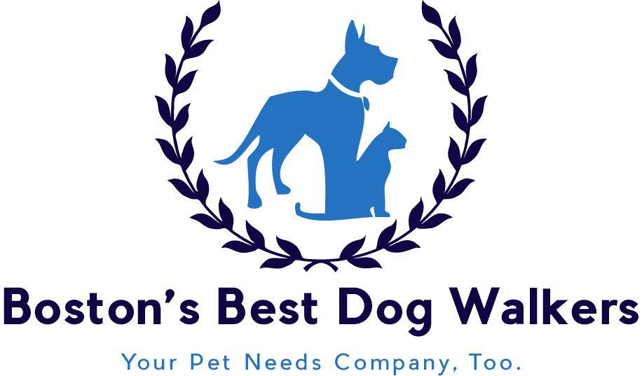 Boston's Best Dog Walkers