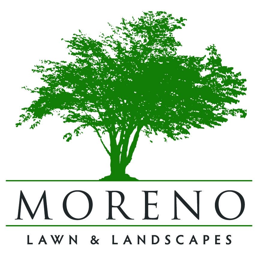 Moreno Lawns and Landscapes