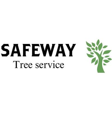 Avatar for Safeway Tree Service Inc.