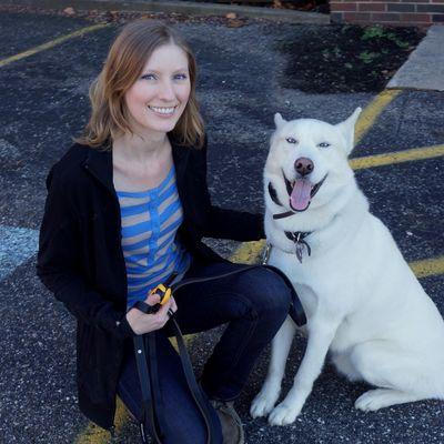 Avatar for Bright Paws Dog Training Lakewood, OH Thumbtack