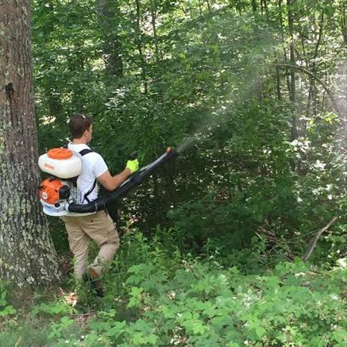 Mosquito & Tick Treatments