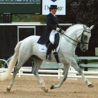 Avatar for Schuck Equestrian