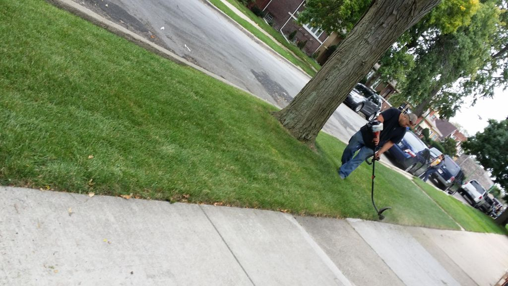 Lalo's Cleaning  & Lawncare & Handyman