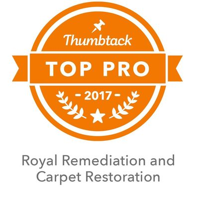 Avatar for ROYAL REMEDIATION AND FLOOR RESTORATION Clarkston, MI Thumbtack