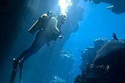 Scuba Dive Vacations