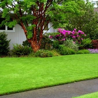 Eastridge Lawns and Landscapes