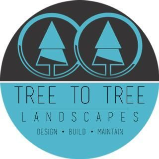 Tree To Tree Landscapes