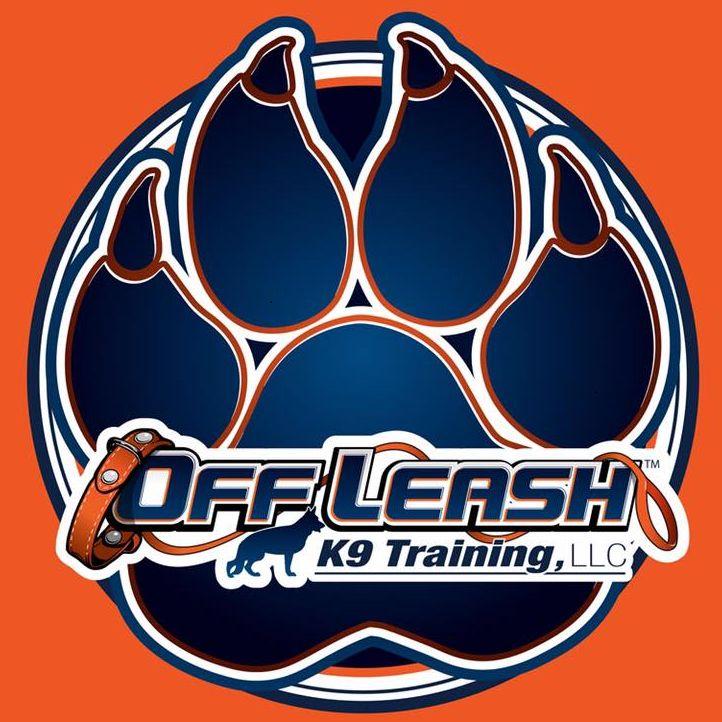 Off Leash K9 Training Rochester