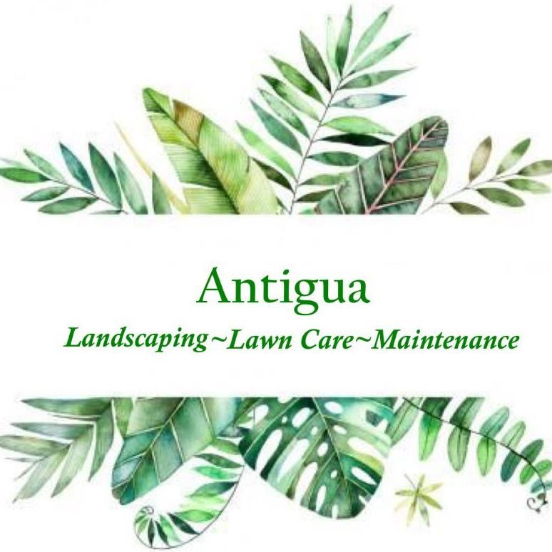 Antigua Landscaping, Lawn Care and Maintenance LLC