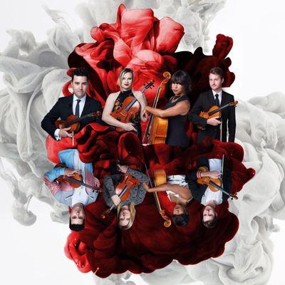 Avatar for Classern String Quartet Orlando, FL Thumbtack