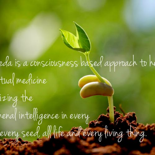 Ayurveda - the science of life - using herbs, therapies and life coaching according to nature.