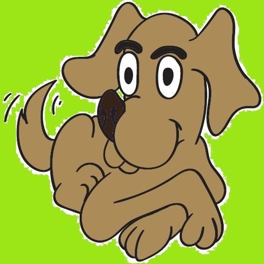 Best Dog Ltd.