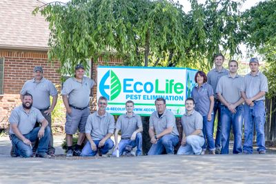 Avatar for EcoLife Natural Pest Solutions Albany, OR Thumbtack