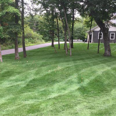 Avatar for Weber's Lawn & Landscape Rogers, MN Thumbtack