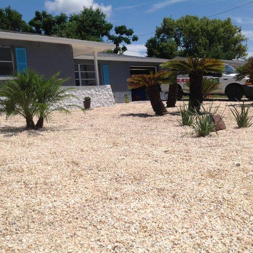 HardScape low maintenance,pea gravel,few palms...