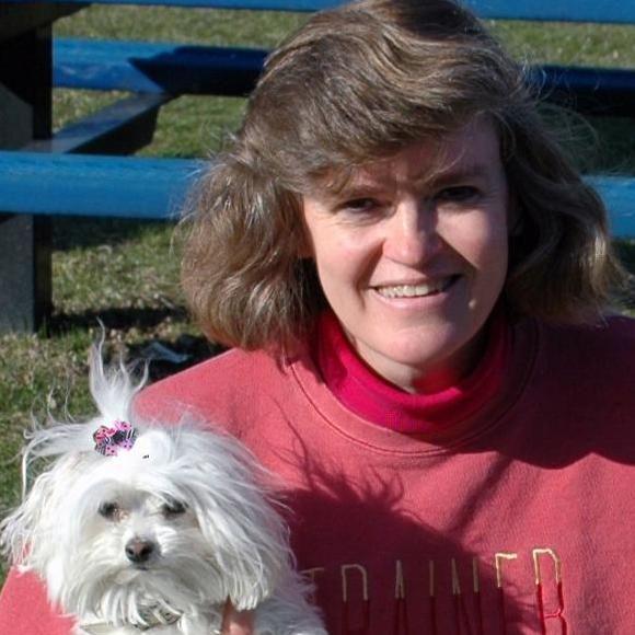Alternative Canine Training, LLC