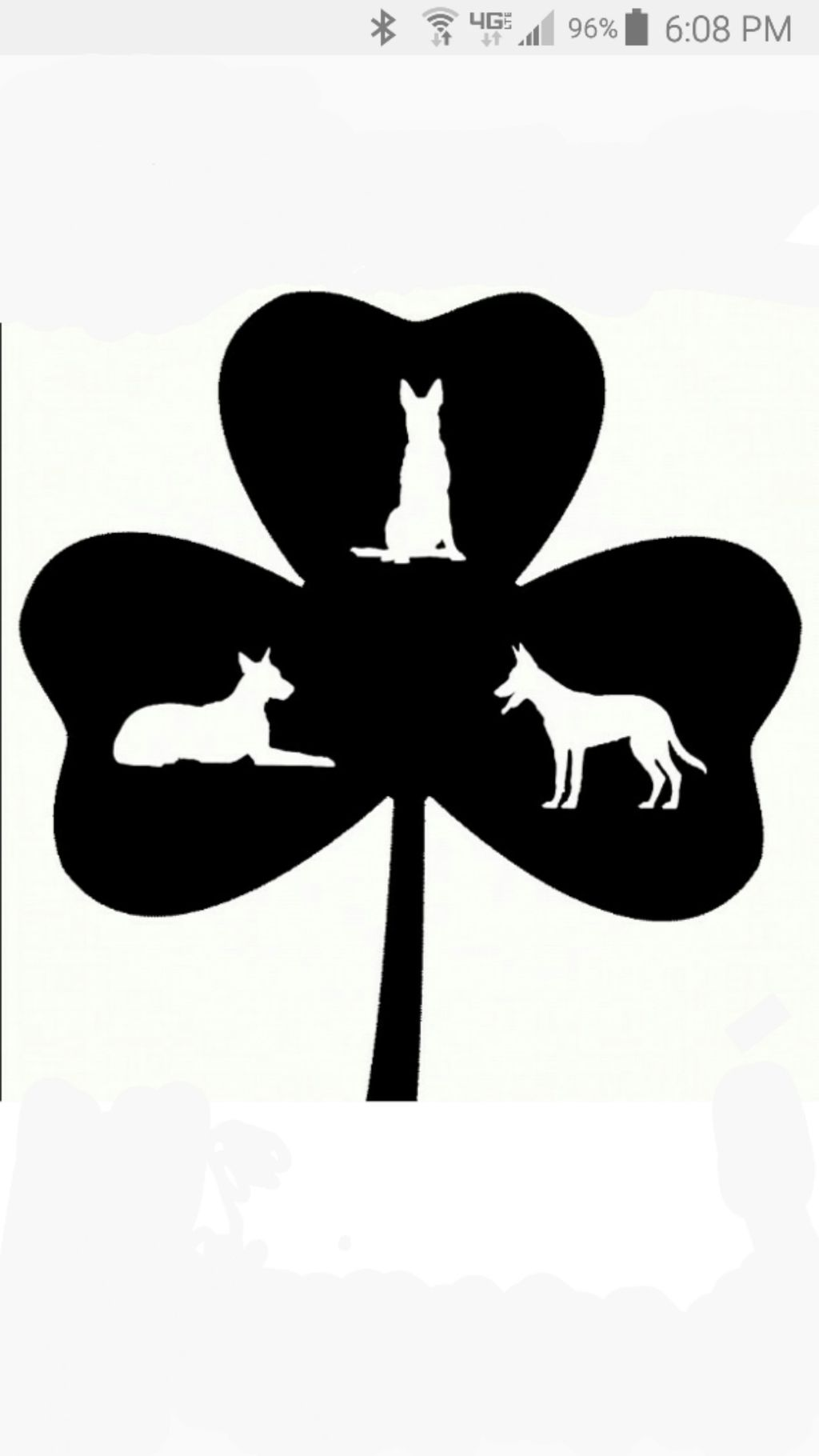 Dilis Dog Academy