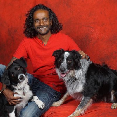 Avatar for Lincoln's Dog Walking/sitting and cat sitting Knoxville, TN Thumbtack