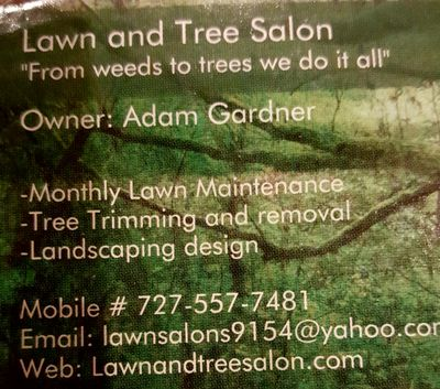 Lawn & Tree Salon Pinellas Park, FL Thumbtack