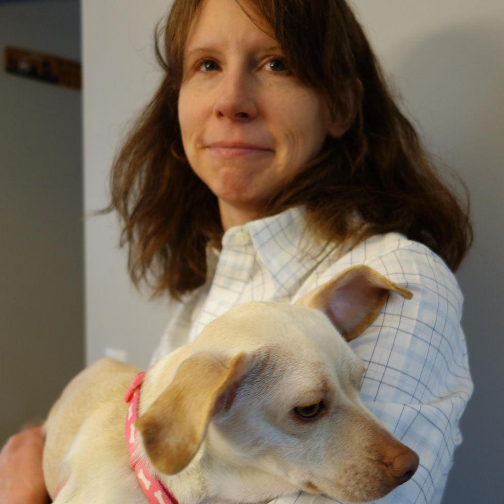 Amy Cusick Dog Walking and Pet Sitting