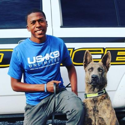 Avatar for C.S Dog Training Gainesville, FL Thumbtack
