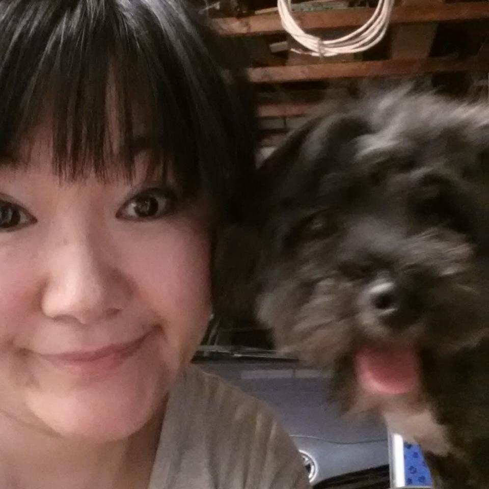 Yuki Dog Grooming