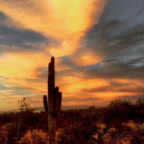 Beautiful Tucson, Arizona