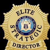 Avatar for ELITE STRATEGIC SECURITY CORP