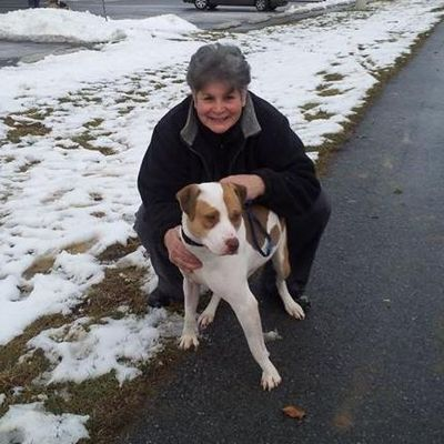Avatar for Elaine Cury Dog Obedience Spring City, PA Thumbtack