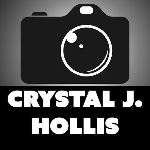 Crystal J. Hollis, Freelancer