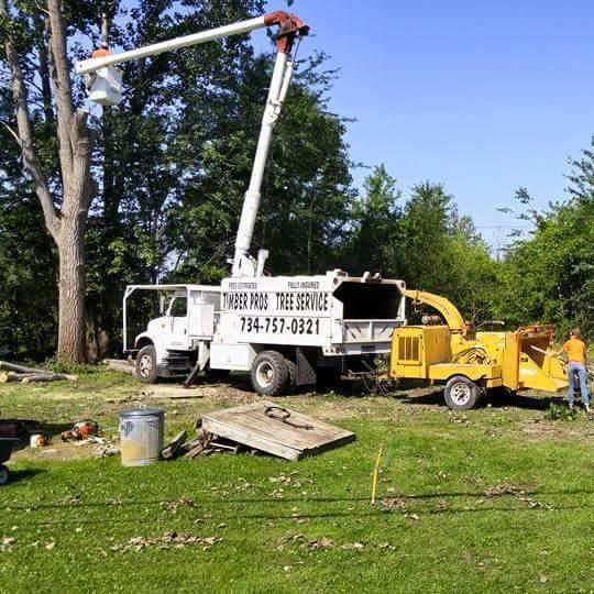 Timber Pros Tree Service