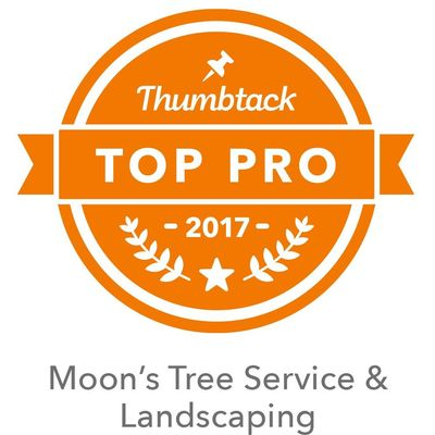 Avatar for Moon's Tree Service & Landscaping