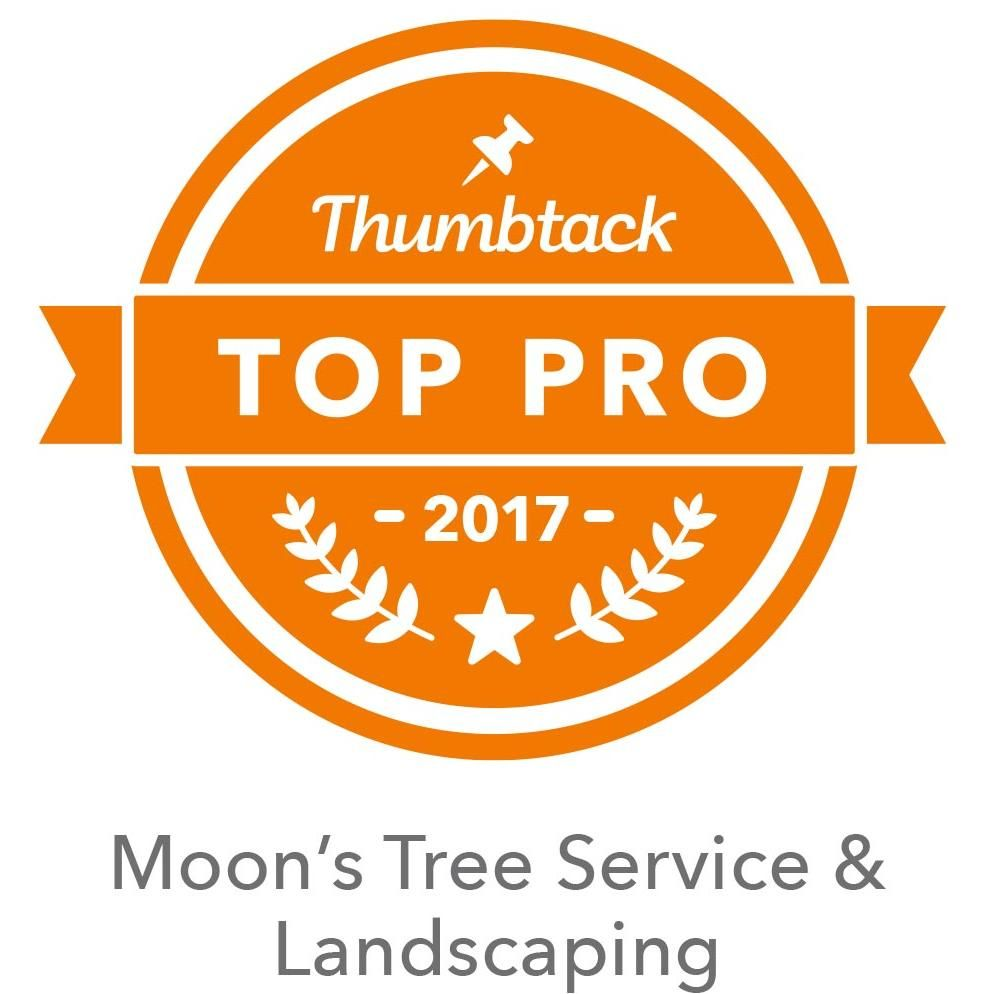 Moon's Tree Service & Landscaping