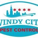 Avatar for Windy City Bed Bug Specialists Chicago, IL Thumbtack
