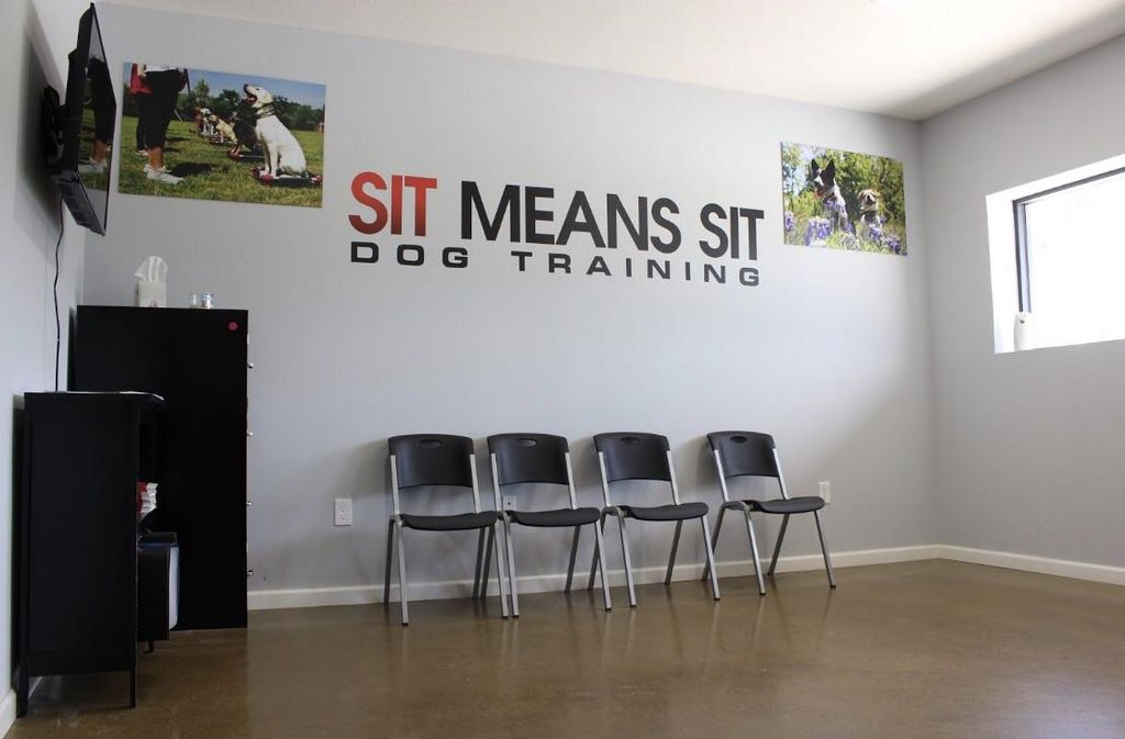 Sit Means Sit College Station
