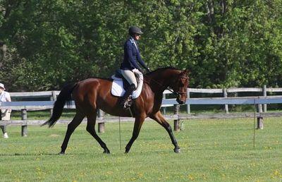Avatar for Windfall Equestrian Center Stillwater, MN Thumbtack