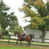 Vantage Point Equestrian Center